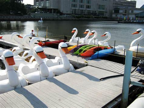 swan boats cedar point kayaking swan boating on the delaware