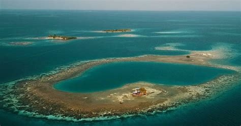 bird island belize airbnb airbnb now offers an entire off the grid caribbean island