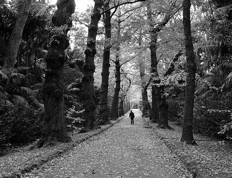 fotos de amor tumblr preto e branco imagens de amor em preto e branco imagens de imagens de