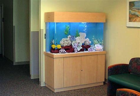 desain aquarium minimalis 15 desain contoh model aquarium minimalis rumah impian
