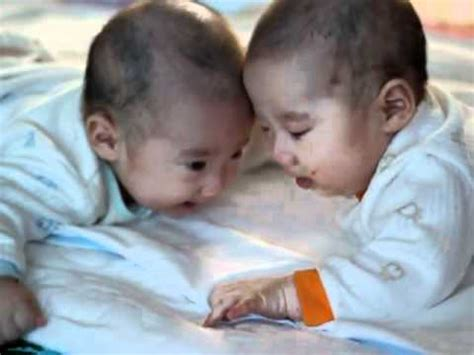 funny  month  korean twins cute baby fight laughing baby  crying baby youtube