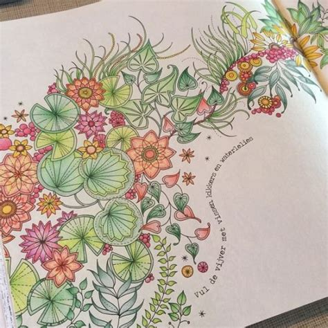secret garden coloring book nl 1000 ideas about secret garden colouring on
