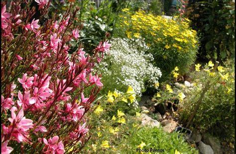 un giardino di perenni in ticino perenne se si vuole