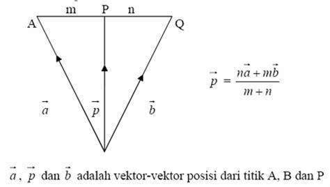 tutorial vektor cs 5 tutorial matematika vektor