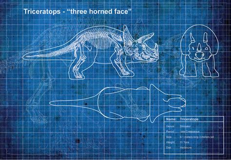 blue prints blueprint triceratops taavsdchar