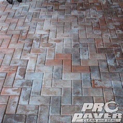 pool deck paver cleaning  paver sealing  repair