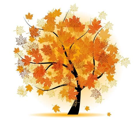 maple tree symbolism maple tree autumn leaf fall stock vector colourbox