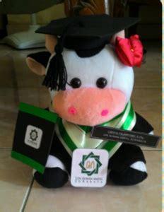 Boneka Wisuda Sapi jual boneka wisuda sapi murah sebagai kado untuk wisuda