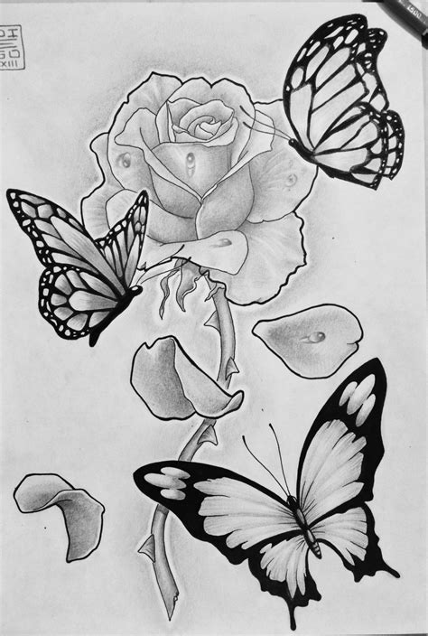 rose and butterflies by zetas art on deviantart