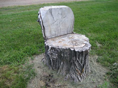 stump chair tree stump cut into chair gardening