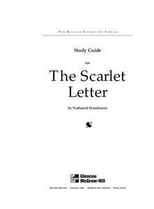 the scarlet letter theme worksheet study guide for the scarlet letter 11th 12th grade
