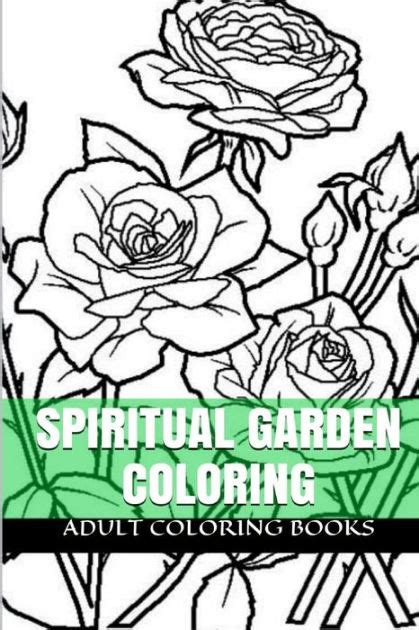 the secret garden coloring book barnes and noble spiritual garden coloring zen and secret nature magic