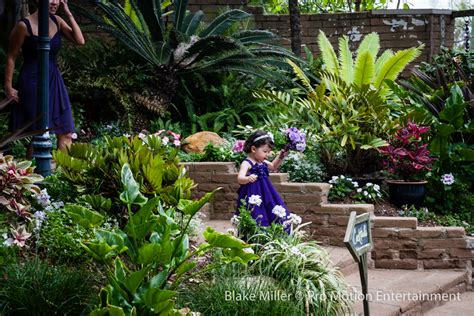San Diego Botanical Gardens Wedding San Diego Botanic Garden Wedding