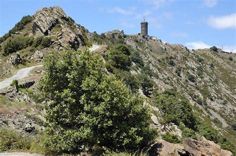 chambre d h e collioure randonn 233 es en pays catalan tourisme collioure sejour