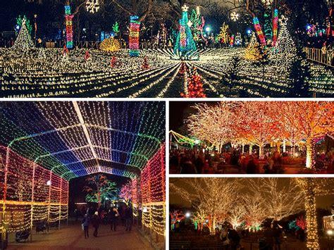 lincoln park zoo lights 2017 чим зайнятись в чикаго на цих вихідних 17 19 листопада