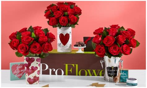 valentines groupon 12 for 30 proflowers groupon