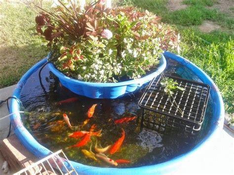 diy backyard aquaponics best 25 aquaponics diy ideas on pinterest aquaponics diy hydroponics and hydroponics