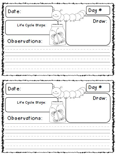 printable caterpillar observation journal close reading text pair lesson plan natasha belanich