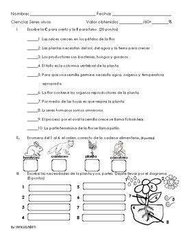 Examen sobre las plantas, partes de la flor y cadena