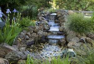 the backyard guru more steps to building your own pond
