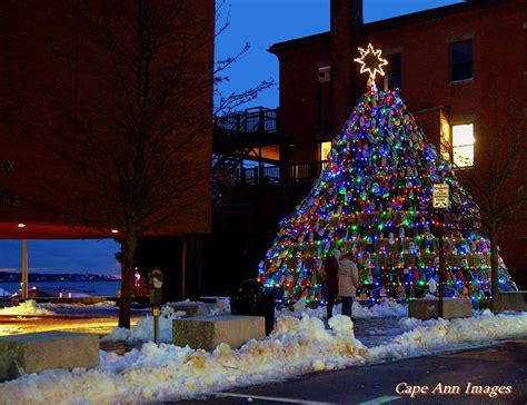 public boat r in plymouth ma lobster trap christmas tree the hull truth boating