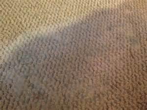Carpet rental house tenants new jersey nj city data forum