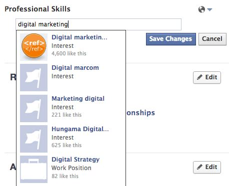 adds professional skills section to user profiles