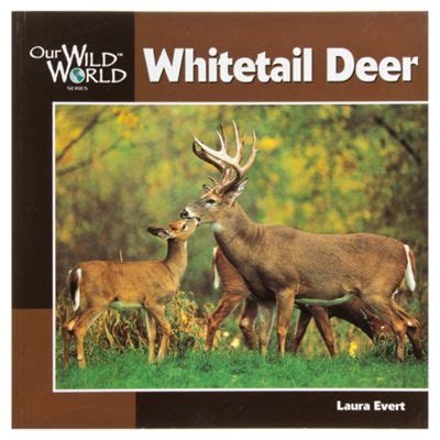 whitetail deer facts and strategies books our world whitetail deer book for