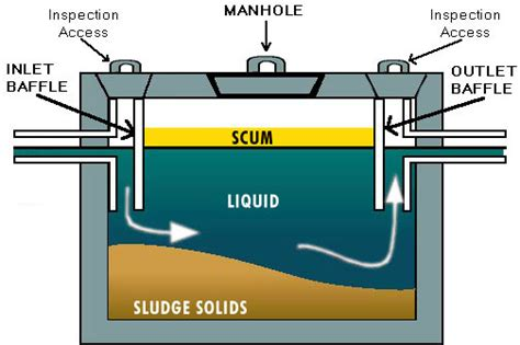 septic tank system diagram plumb to or not to plumb