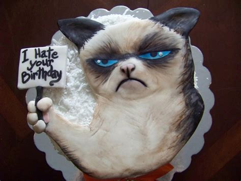 grumpy cat party ideas one charming party birthday 316 best cakes cat dog pets images on pinterest