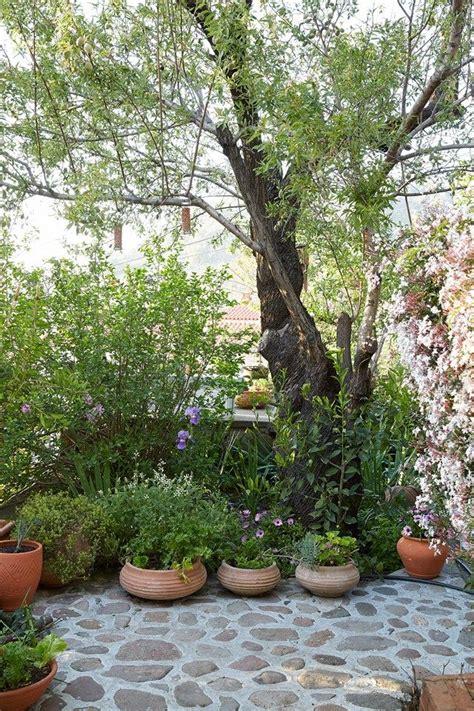 greek backyard designs 17 best ideas about greek garden on pinterest mediterranean style seat covers