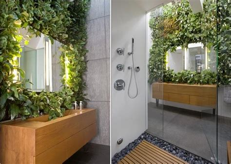 Plants In Bathroom by Best Plants That Suit Your Bathroom Fresh Decor Ideas