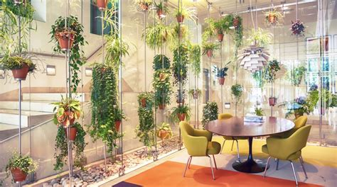 Best Plants For Office With No Windows Ideas The Best Indoor Plants For Australian Offices Lifehacker Australia