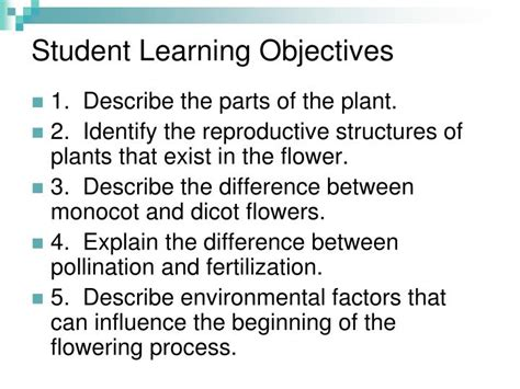 student learning objective template ppt examining parts of a plant powerpoint presentation