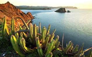 mexico landscape 01 vistas pinterest landscaping