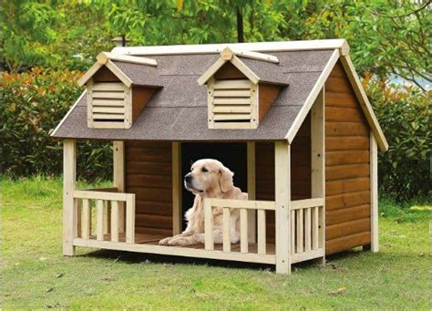 house dogs 25 best ideas about dog houses on pinterest amazing dog