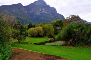 Cape Town Botanical Gardens Impressive Botanical Garden Kirstenbosch Cape Town South Africa Back Overview Of The Mountain