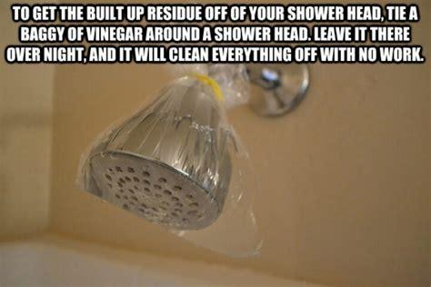 clean shower head hints pinterest