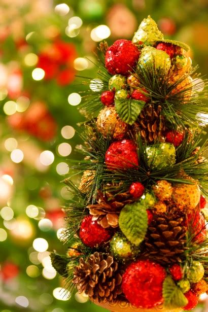 domain austin christmas tree christmas tree free stock photo public domain pictures