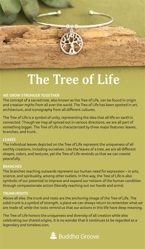 tree meaning 25 beautiful tree of life meaning ideas on pinterest