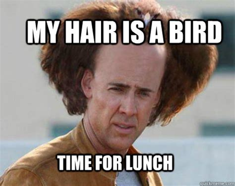 Nicolas Cage Funny Memes - my hair is a bird time for lunch crazy nicolas cage quickmeme