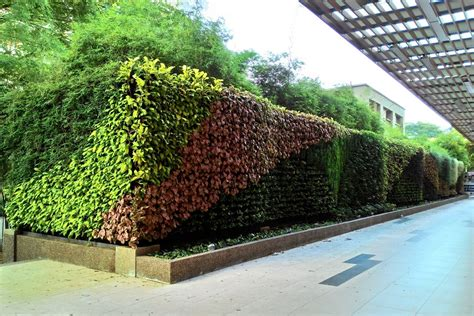 vertical garden in gurney plaza penang lush eco