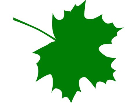 leaf clip free sugar maple leaf clipart clipart suggest