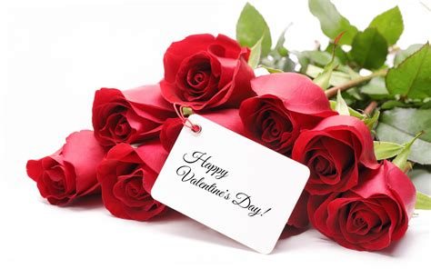 themes for rose day valentine s day roses ideas for your love