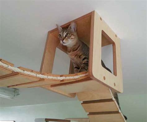 wall mounted cat playground furniture gearnova