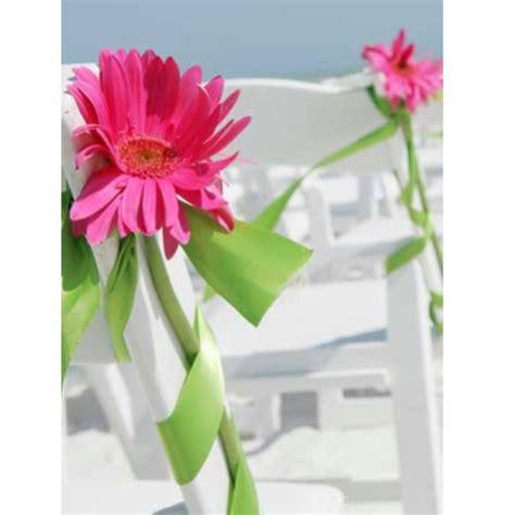 59 best images about gerber daisies wedding flower ideas