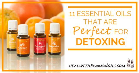 Essential Oils For Detoxing The by 11 Essential Oils That Are For Detoxing