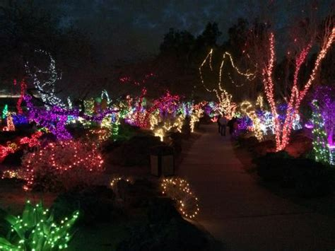 christmas lights at the cactus garden in henderson nv