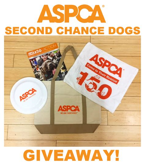 second chance dogs stuffer giveaway hop ends 11 30 finding sanity in our