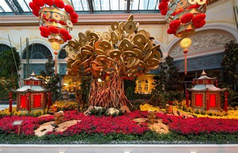 money tree for new year where to celebrate new year in las vegas las